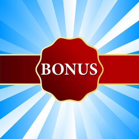 How To Take Advantage Of A Holiday Bonus