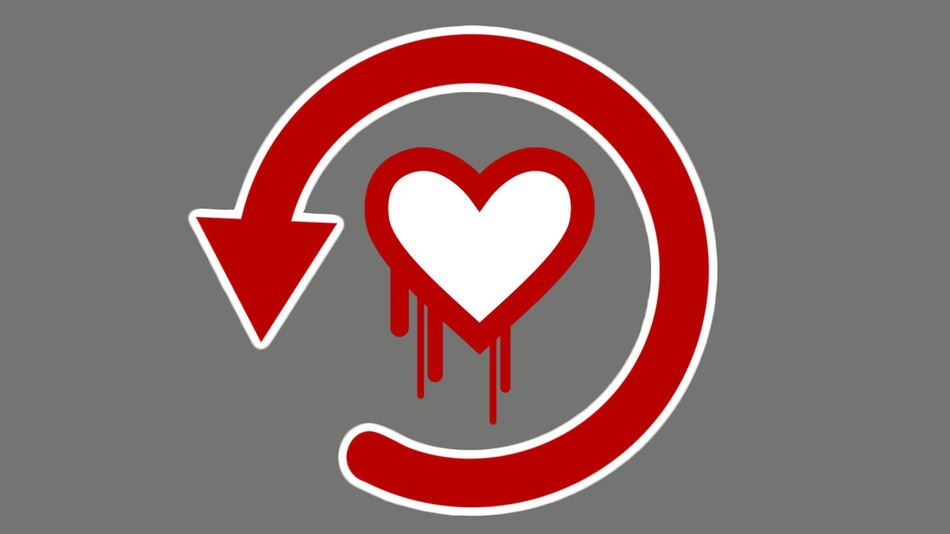 The Heartbleed Bug – How to Protect Yourself from Credit Damage